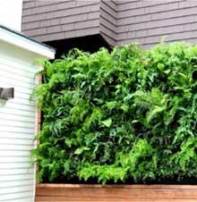 jardín vertical home