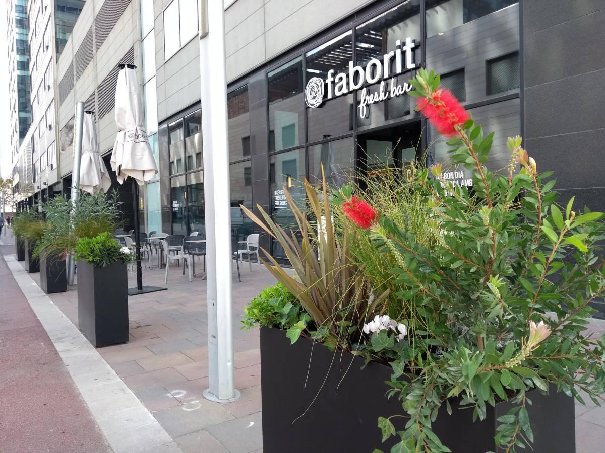 Terrazas de bares y restaurantes