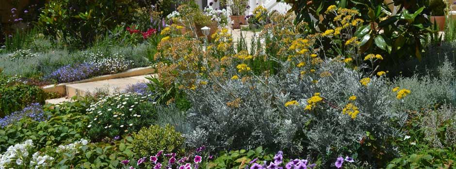Garden design and landscaping