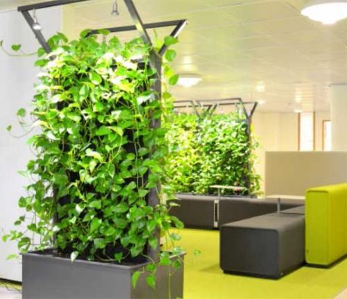 jardín vertical oficinas
