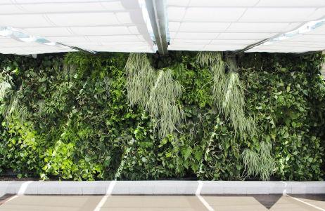 jardines verticales hoteles