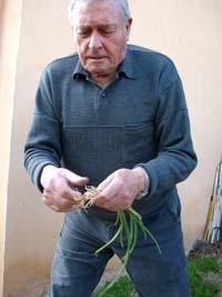 Vicente en el seu hort urbà
