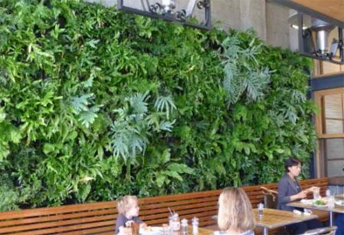 jardín vertical restaurante