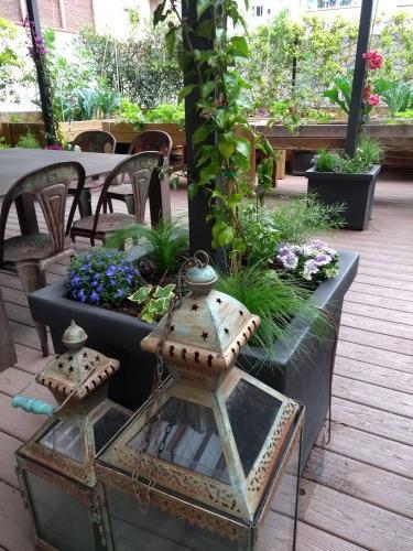 Patio con plantas anuales y un huerto urbano