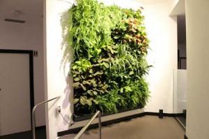 Instalacion jardín vertical en la pared de un hotel