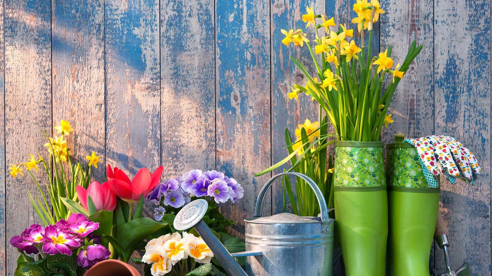 Ten Various Ways To Do Gardening!