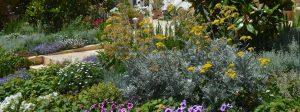 servicios de jardineria en barcelona