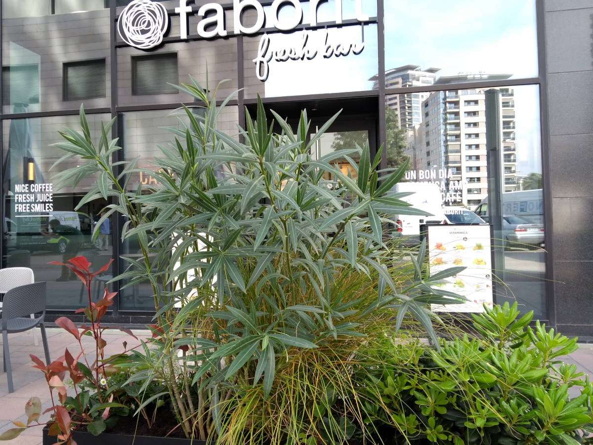 Terrazas De Bares Restaurantes Y Hoteles Huertocity Com