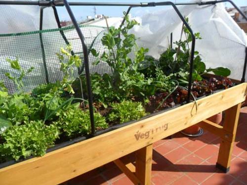 El VegTrug con capote de invernadero