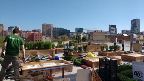 Anuncio - huerto urbano Barcelona